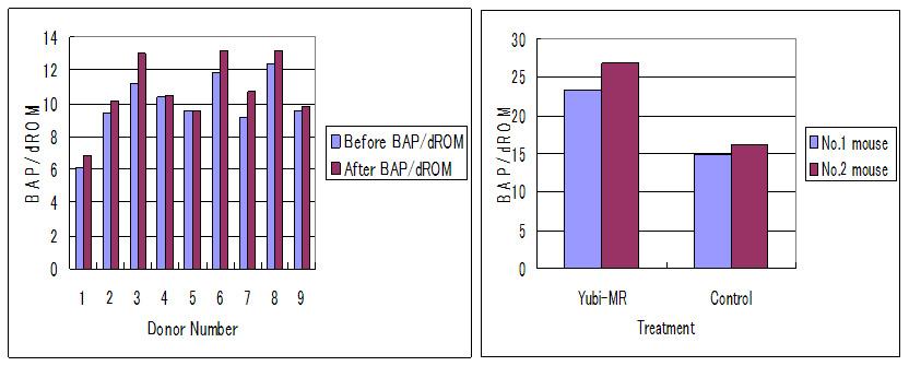 Figure 5 Suppression of oxidative stress by Yubi-MR radiation.