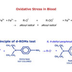 Oxidative Stress in Blood
